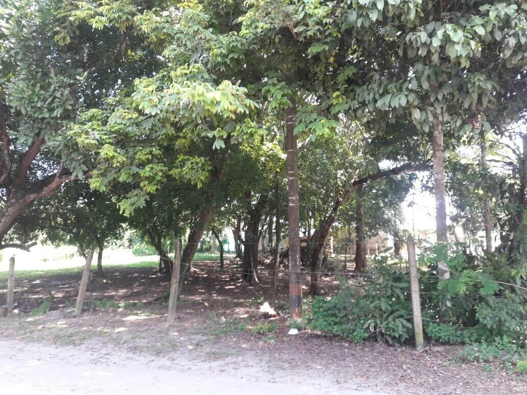 Lote en venta en Arauca, Arauca barrio Villa del maestro